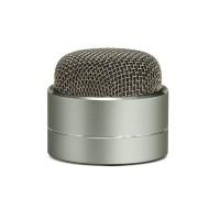 Karaoke, Портативная Bluetooth колонка