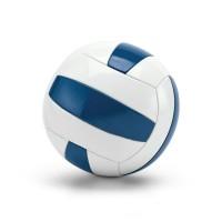 Волейбольный мяч VX